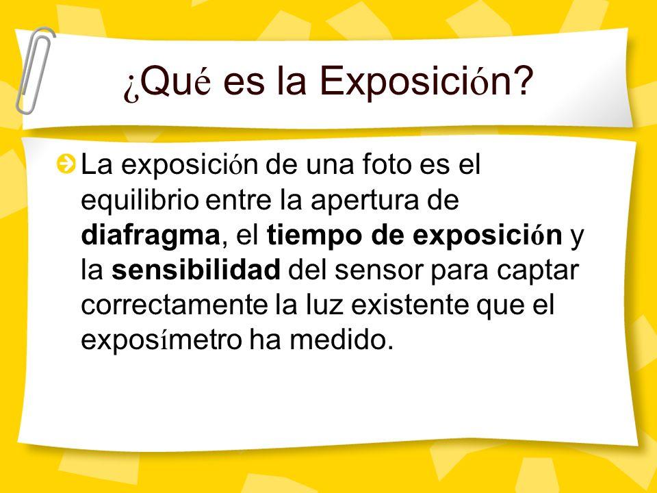 ¿ Qu é es la Exposici ó n.