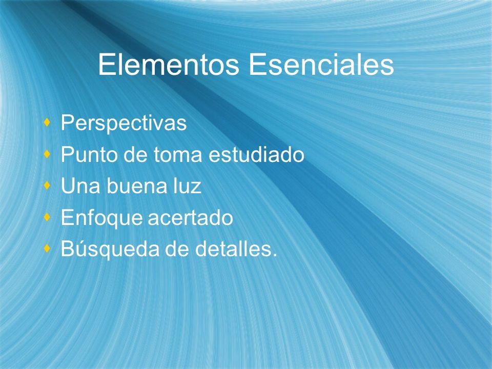 Elementos Esenciales Perspectivas Punto de toma estudiado Una buena luz Enfoque acertado Búsqueda de detalles. Perspectivas Punto de toma estudiado Un