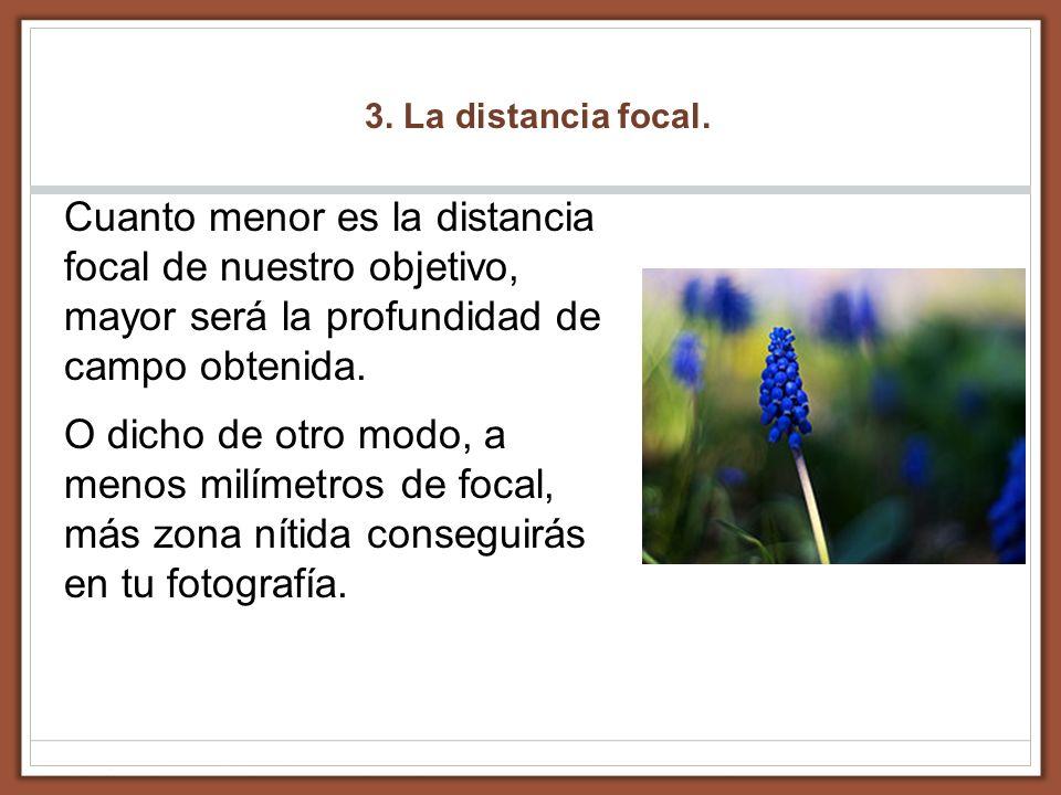 3. La distancia focal. Cuanto menor es la distancia focal de nuestro objetivo, mayor será la profundidad de campo obtenida. O dicho de otro modo, a me