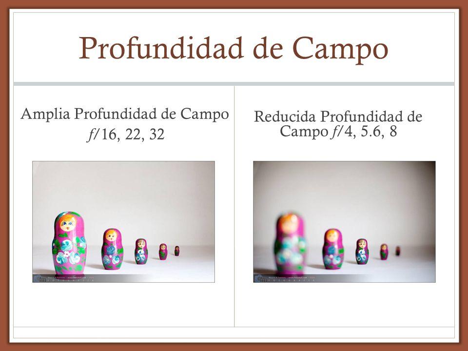 Profundidad de Campo Amplia Profundidad de Campo f /16, 22, 32 Reducida Profundidad de Campo f/4, 5.6, 8