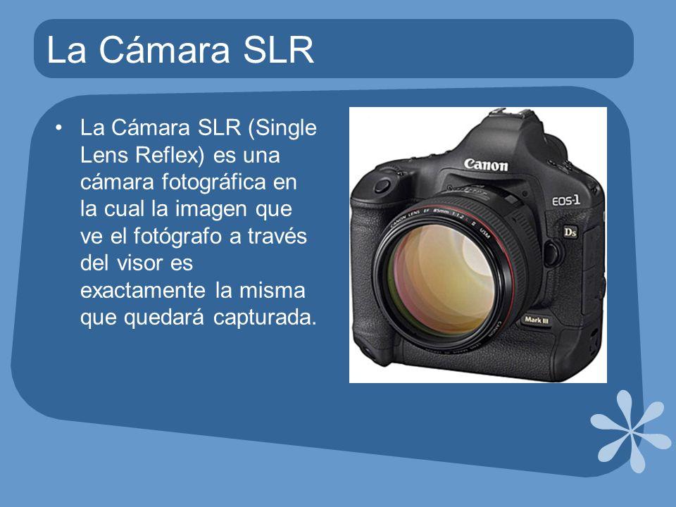 La Cámara SLR La Cámara SLR (Single Lens Reflex) es una cámara fotográfica en la cual la imagen que ve el fotógrafo a través del visor es exactamente