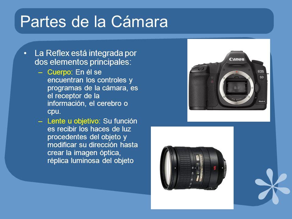Partes de la Cámara La Reflex está integrada por dos elementos principales: –Cuerpo: En él se encuentran los controles y programas de la cámara, es el