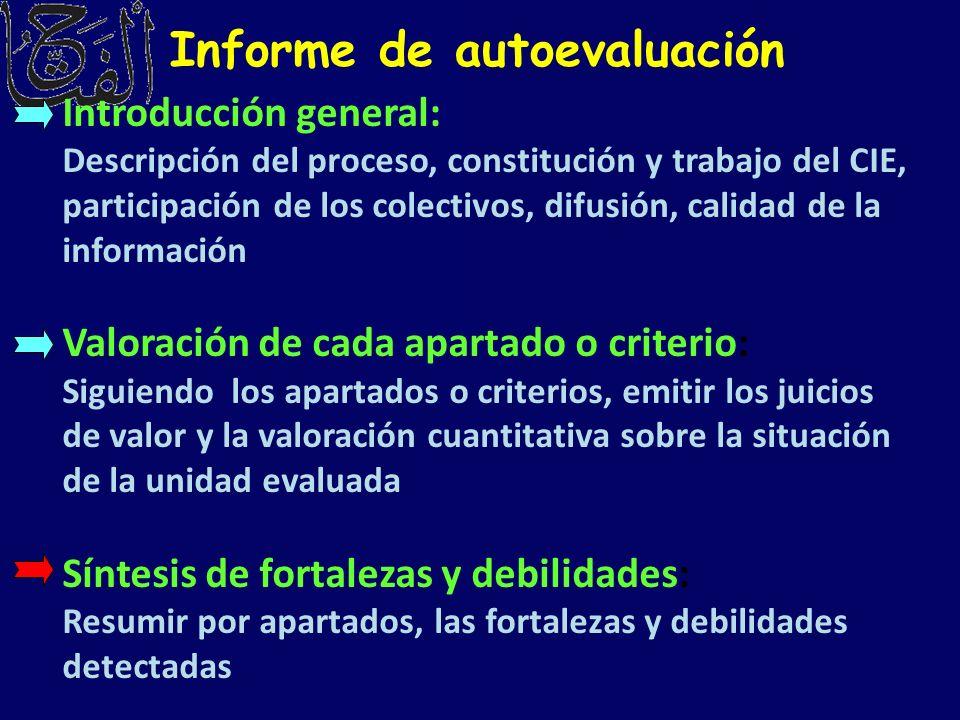 Informe de autoevaluación Introducción general: Descripción del proceso, constitución y trabajo del CIE, participación de los colectivos, difusión, ca