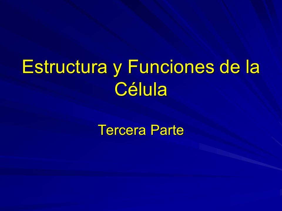 Estructura y Funciones de la Célula Tercera Parte