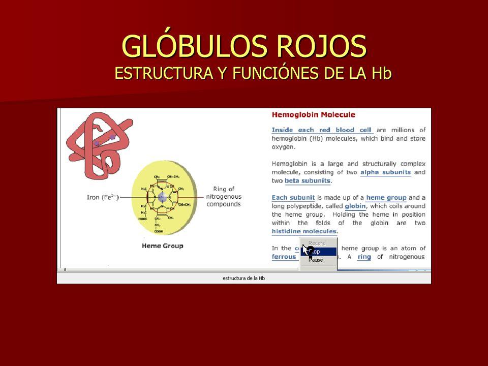 GLÓBULOS ROJOS ESTRUCTURA Y FUNCIÓNES DE LA Hb