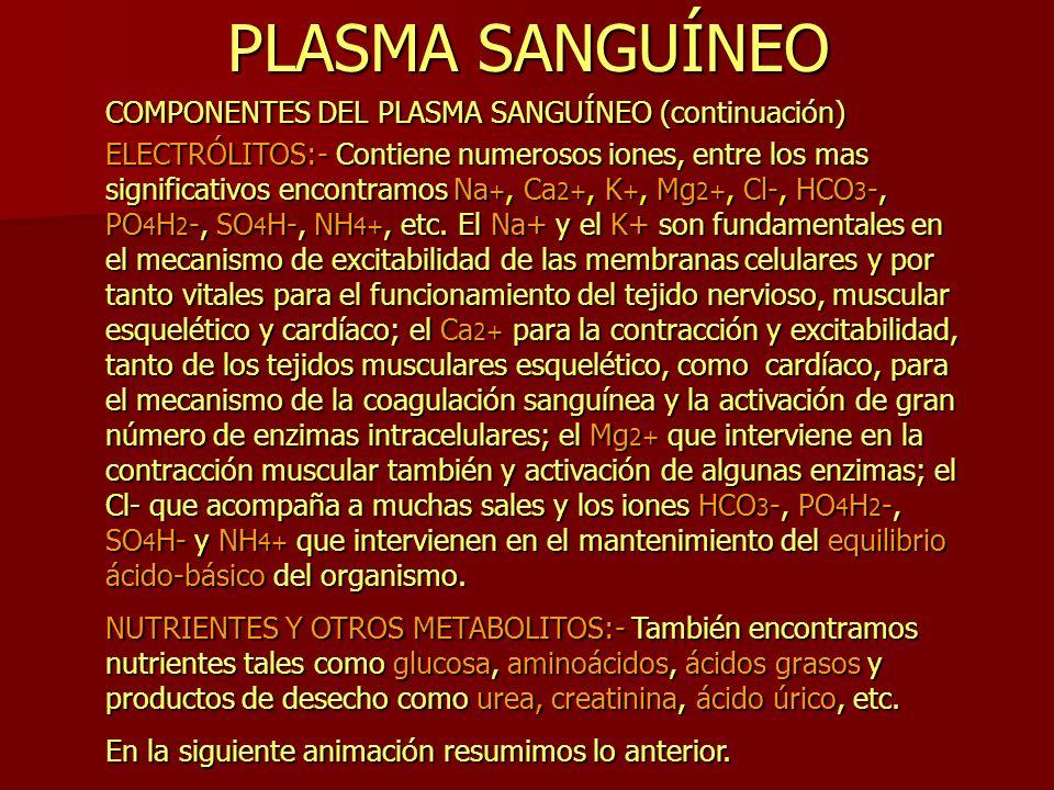 PLASMA SANGUÍNEO COMPONENTES DEL PLASMA SANGUÍNEO (continuación) ELECTRÓLITOS:- Contiene numerosos iones, entre los mas significativos encontramos Na