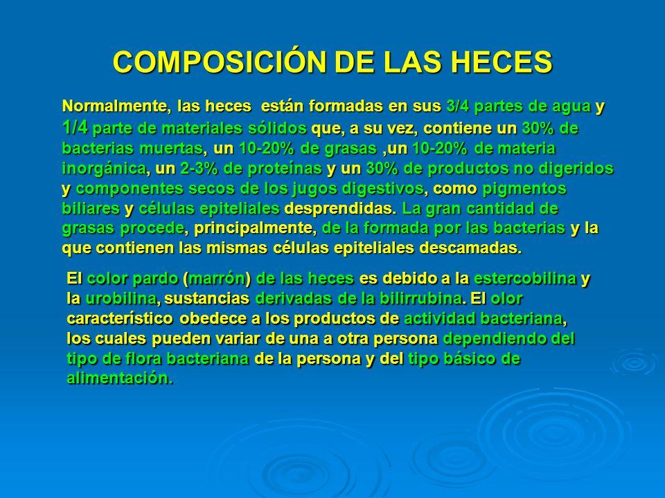 COMPOSICIÓN DE LAS HECES Normalmente, las heces están formadas en sus 3/4 partes de agua y 1/4 parte de materiales sólidos que, a su vez, contiene un