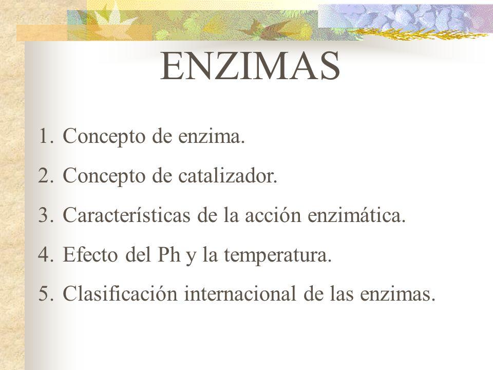 ENZIMAS 1.Concepto de enzima. 2.Concepto de catalizador. 3.Características de la acción enzimática. 4.Efecto del Ph y la temperatura. 5.Clasificación
