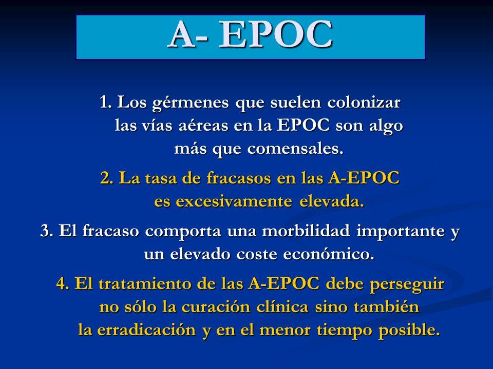 1. Los gérmenes que suelen colonizar las vías aéreas en la EPOC son algo más que comensales. 2. La tasa de fracasos en las A-EPOC es excesivamente ele