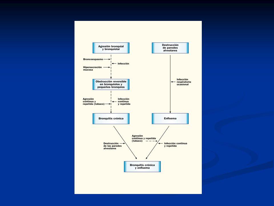 Manejo de la EPOC Estadío 0 Características Tratamiento recomendado Síntomas crónicos - tos - esputo Sin alteraciones espirométricas