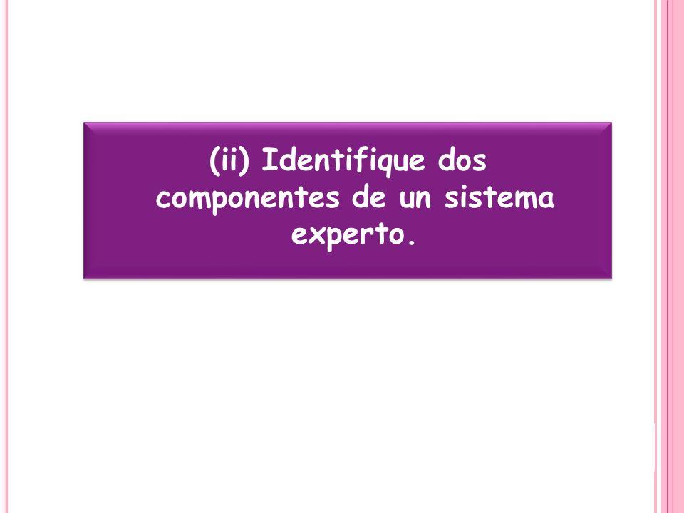 (ii) Identifique dos componentes de un sistema experto.