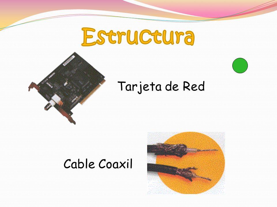 Tarjeta de Red Cable Coaxil