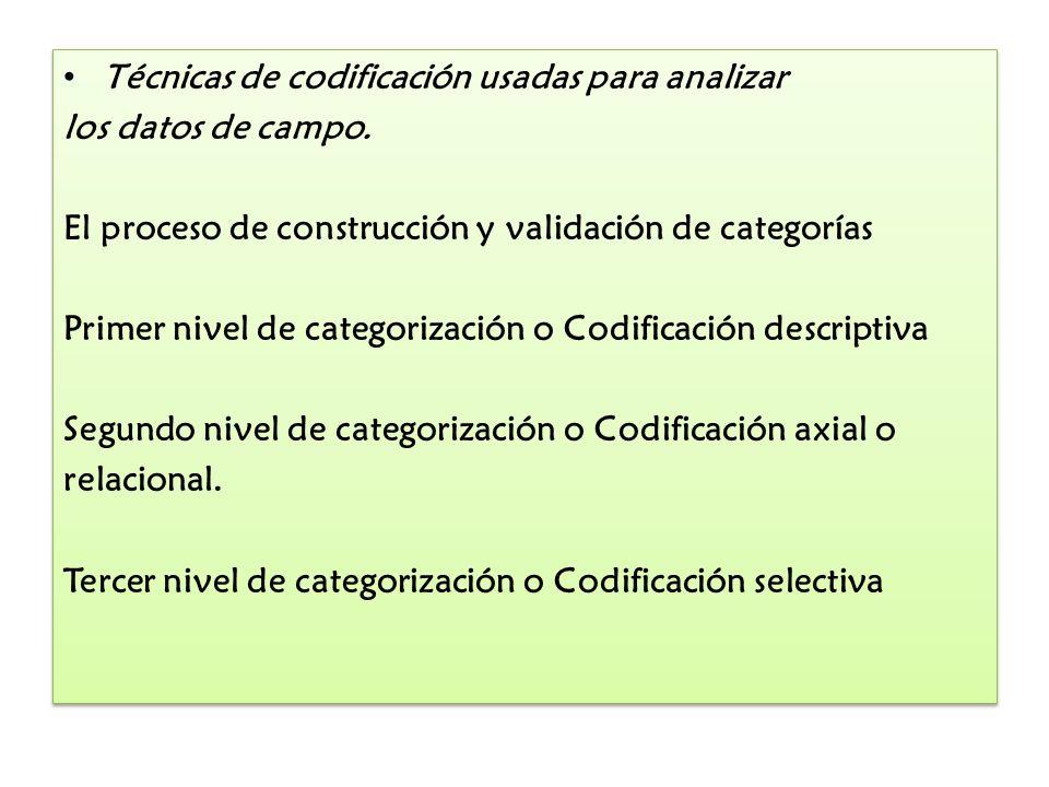 Técnicas de codificación usadas para analizar los datos de campo. El proceso de construcción y validación de categorías Primer nivel de categorización