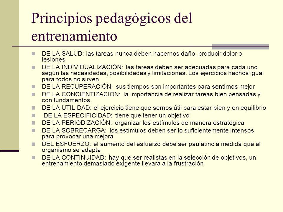 Principios pedagógicos del entrenamiento DE LA SALUD: las tareas nunca deben hacernos daño, producir dolor o lesiones DE LA INDIVIDUALIZACIÓN: las tar