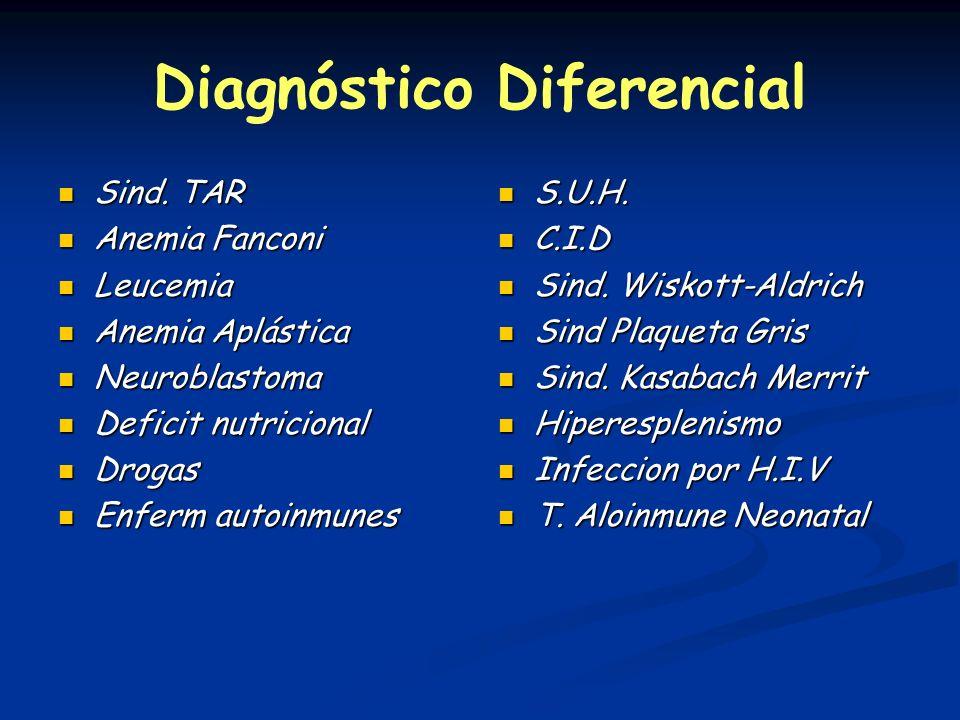 Diagnóstico Diferencial Sind. TAR Sind. TAR Anemia Fanconi Anemia Fanconi Leucemia Leucemia Anemia Aplástica Anemia Aplástica Neuroblastoma Neuroblast