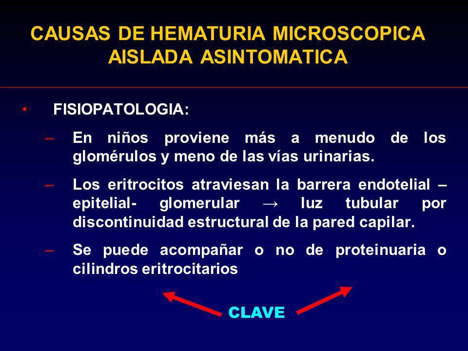 CAUSAS DE HEMATURIA MICROSCOPICA AISLADA ASINTOMATICA FISIOPATOLOGIA: –En niños proviene más a menudo de los glomérulos y meno de las vías urinarias.