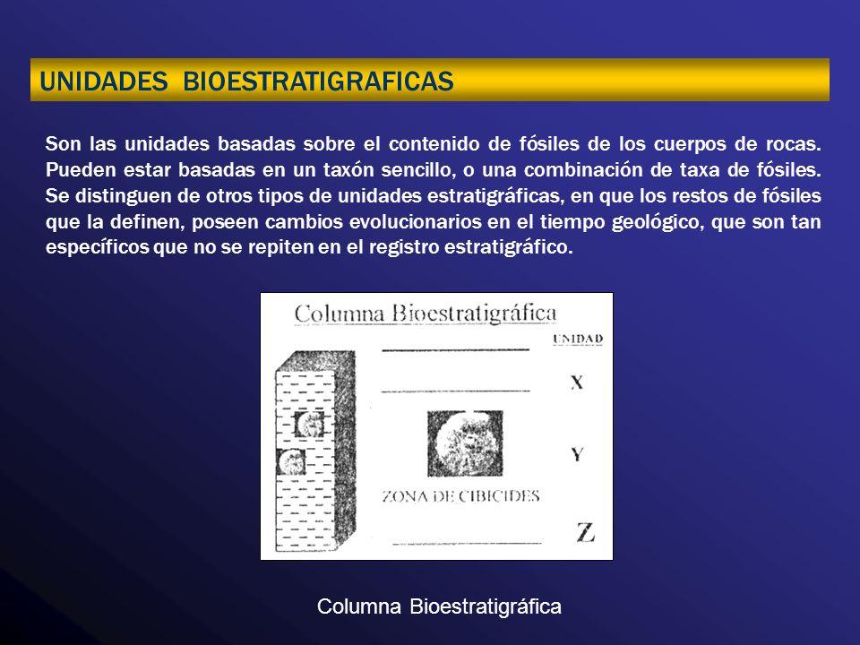 UNIDADES CRONOESTRATIGRAFICAS.