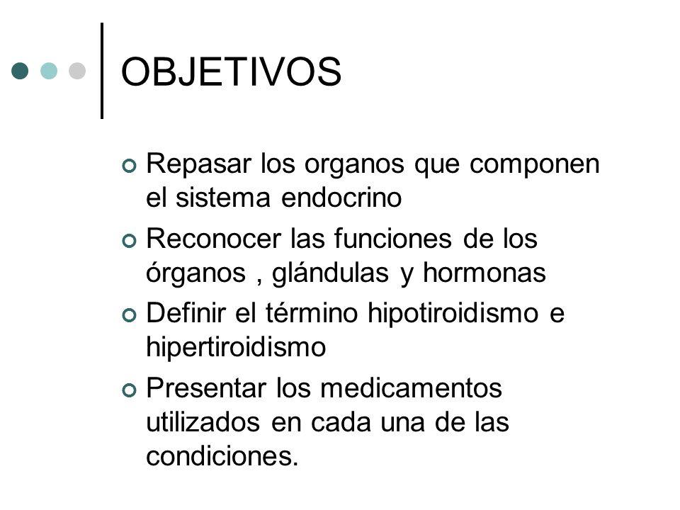 OBJETIVOS Repasar los organos que componen el sistema endocrino Reconocer las funciones de los órganos, glándulas y hormonas Definir el término hipoti