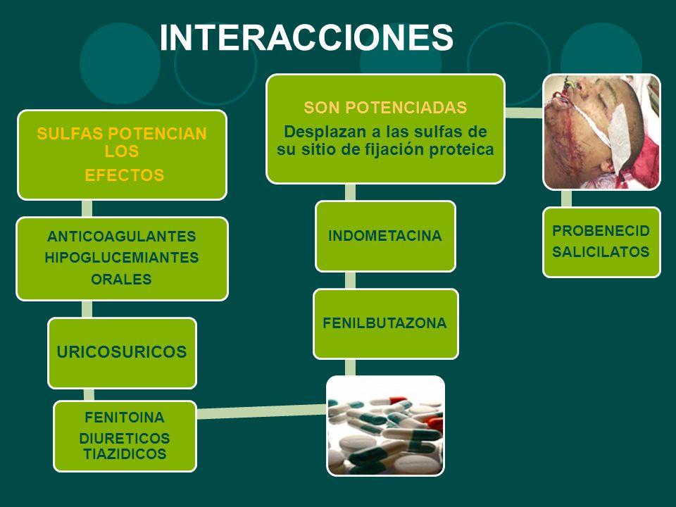 INTERACCIONES SULFAS POTENCIAN LOS EFECTOS ANTICOAGULANTES HIPOGLUCEMIANTES ORALES URICOSURICOS FENITOINA DIURETICOS TIAZIDICOS FENILBUTAZONAINDOMETAC