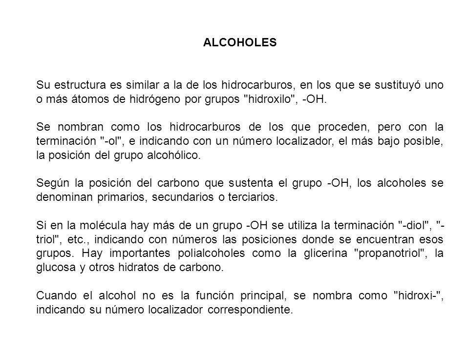 ALCOHOLES Su estructura es similar a la de los hidrocarburos, en los que se sustituyó uno o más átomos de hidrógeno por grupos
