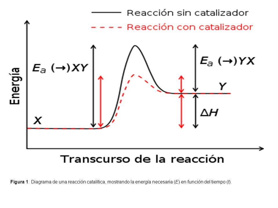 Figura 1: Diagrama de una reacción catalítica, mostrando la energía necesaria (E) en función del tiempo (t).