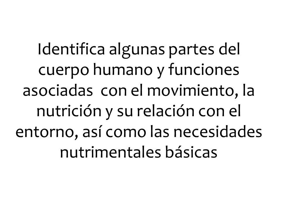 Identifica algunas partes del cuerpo humano y funciones asociadas con el movimiento, la nutrición y su relación con el entorno, así como las necesidad