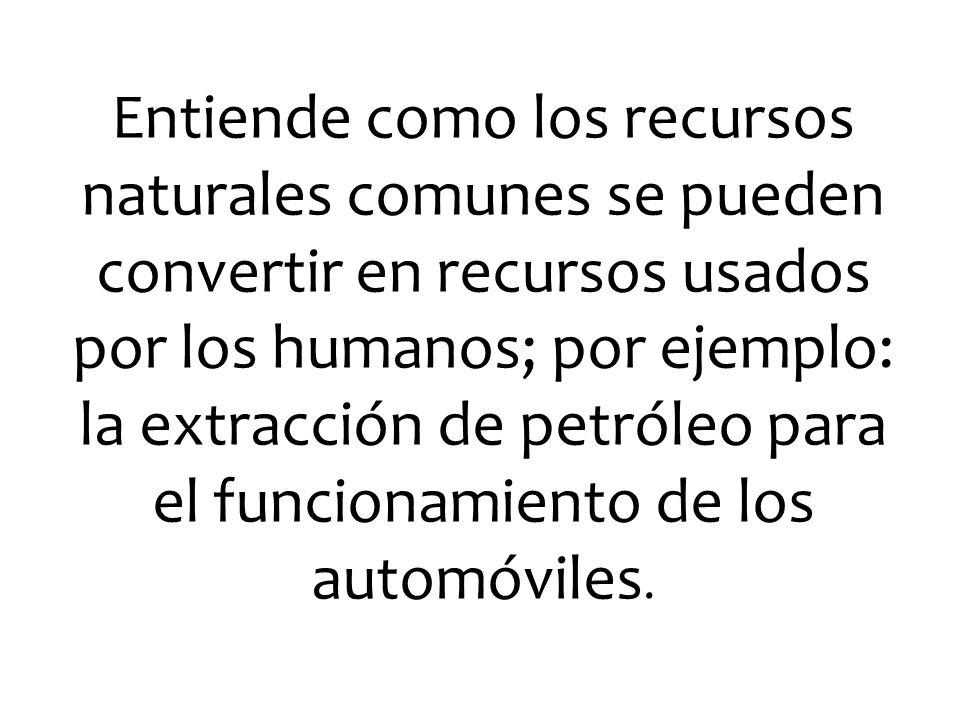 Entiende como los recursos naturales comunes se pueden convertir en recursos usados por los humanos; por ejemplo: la extracción de petróleo para el fu