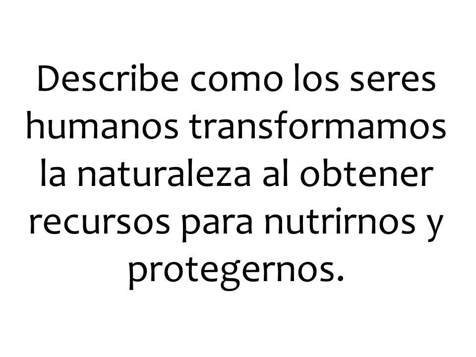 Describe como los seres humanos transformamos la naturaleza al obtener recursos para nutrirnos y protegernos.