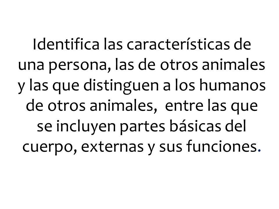 Identifica las características de una persona, las de otros animales y las que distinguen a los humanos de otros animales, entre las que se incluyen p