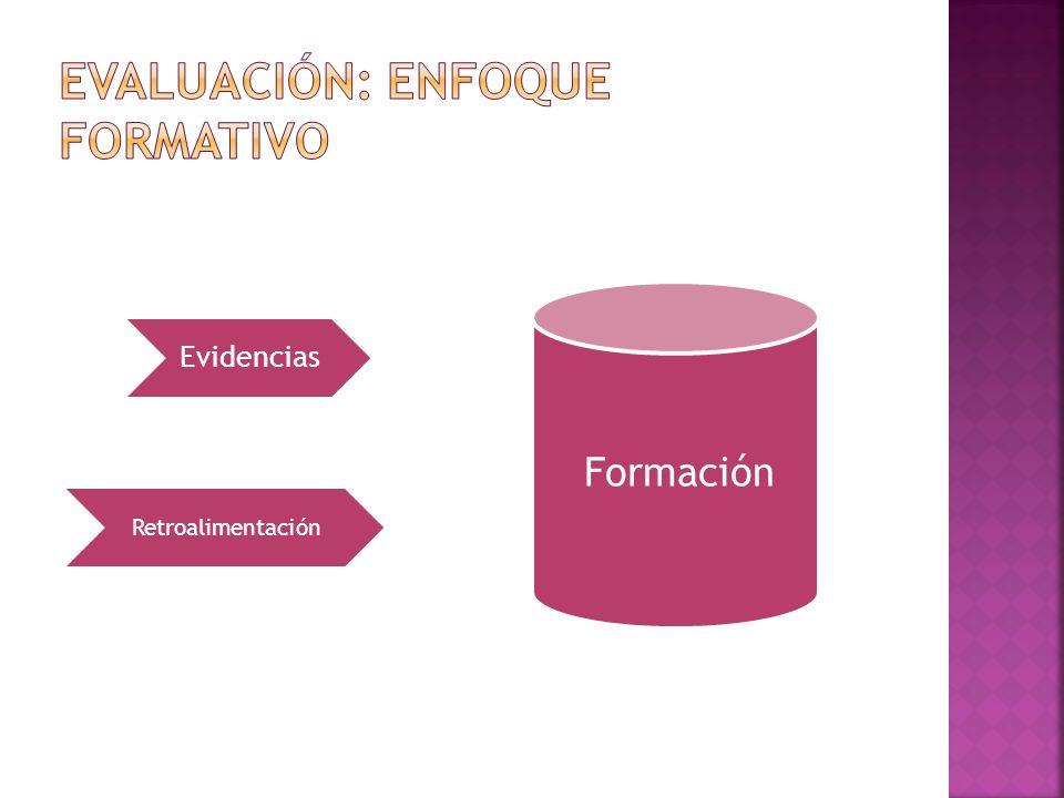Evidencias Retroalimentación Formación