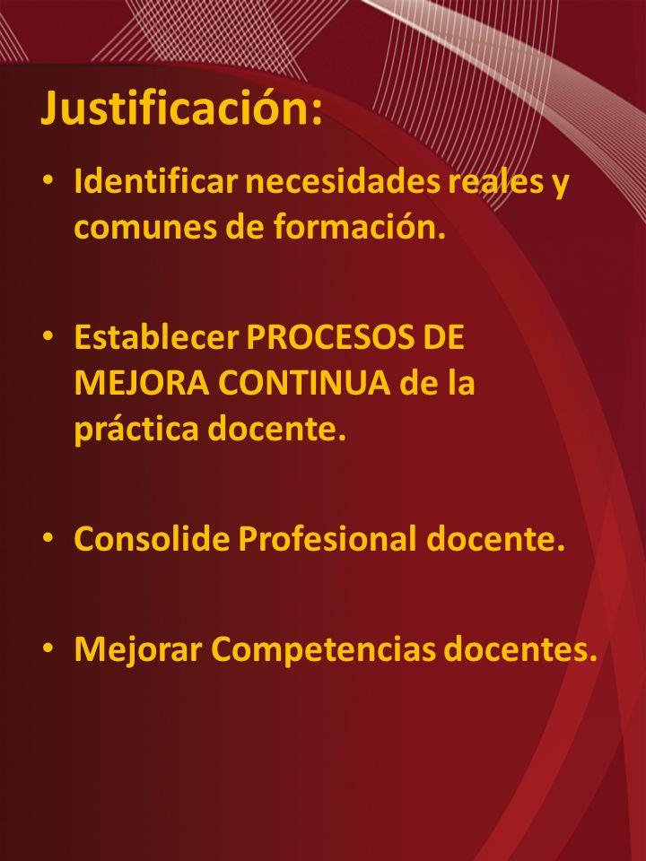 Justificación: Identificar necesidades reales y comunes de formación. Establecer PROCESOS DE MEJORA CONTINUA de la práctica docente. Consolide Profesi