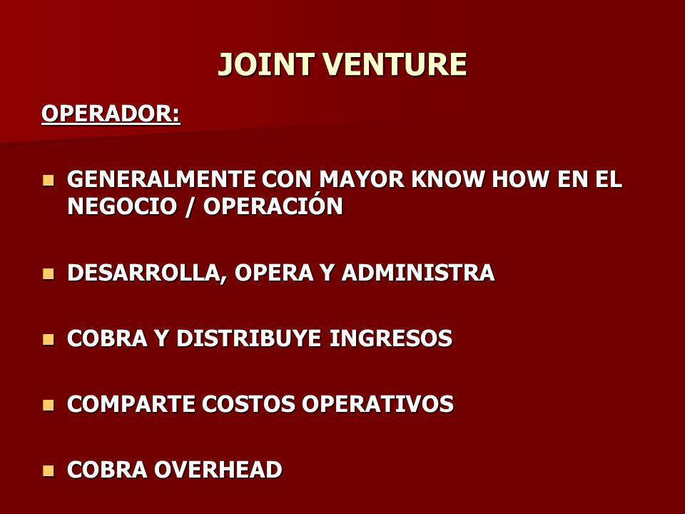 JOINT VENTURE OPERADOR: GENERALMENTE CON MAYOR KNOW HOW EN EL NEGOCIO / OPERACIÓN GENERALMENTE CON MAYOR KNOW HOW EN EL NEGOCIO / OPERACIÓN DESARROLLA