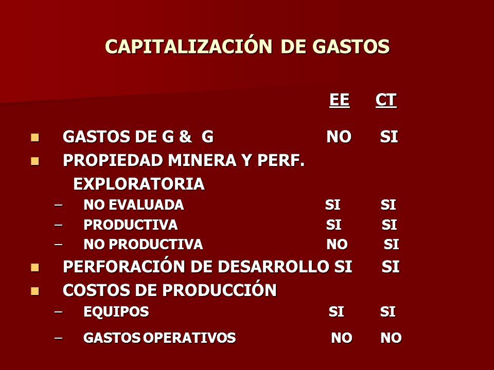 CAPITALIZACIÓN DE GASTOS EECT EECT GASTOS DE G & GNO SI GASTOS DE G & GNO SI PROPIEDAD MINERA Y PERF. PROPIEDAD MINERA Y PERF. EXPLORATORIA EXPLORATOR