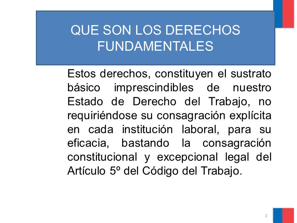 División de RR.LL - Servicio Asistencia Técnica GARANTIAS PROTEGIDAS: 7.