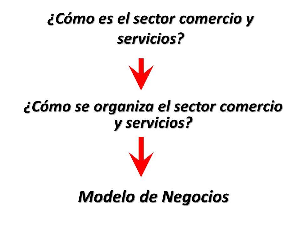 ¿Cómo es el sector comercio y servicios? ¿Cómo se organiza el sector comercio y servicios? Modelo de Negocios
