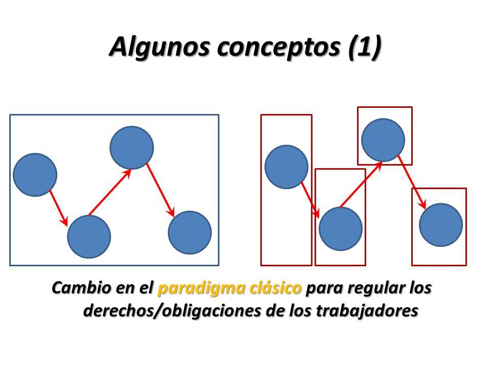 Algunos conceptos (2) La externalización es la implementación de la descentralización productiva, genera, una modificación en la estructura laboral de la empresa, dando lugar a distintitos fenómenos de orden laboral, tales como: fragmentación empresarial, triangulación y trabajo autónomo.