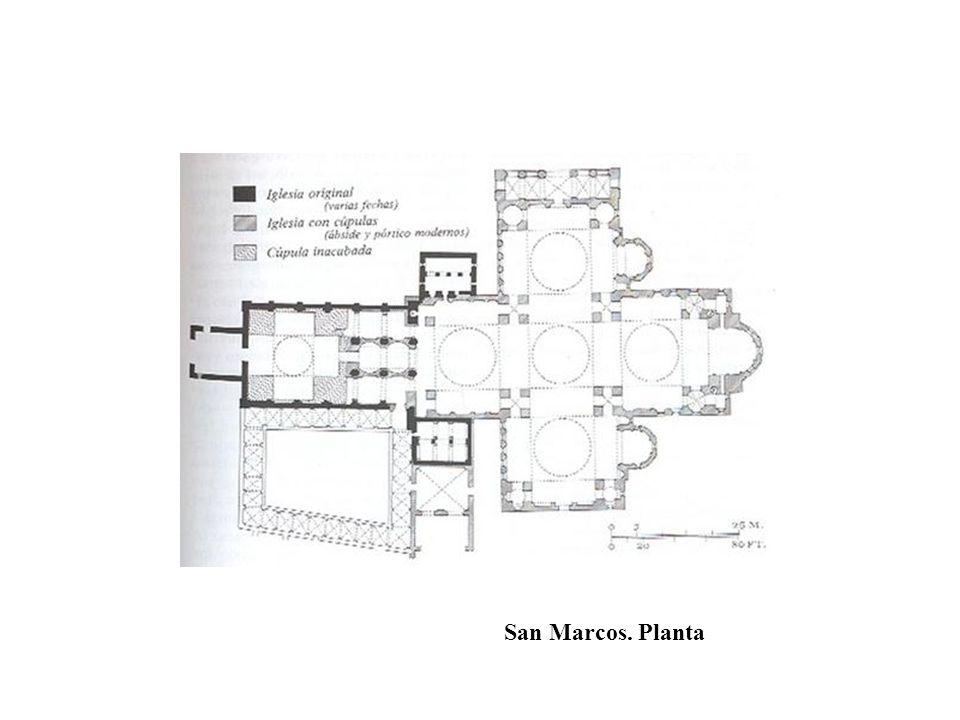 San Marcos. Planta
