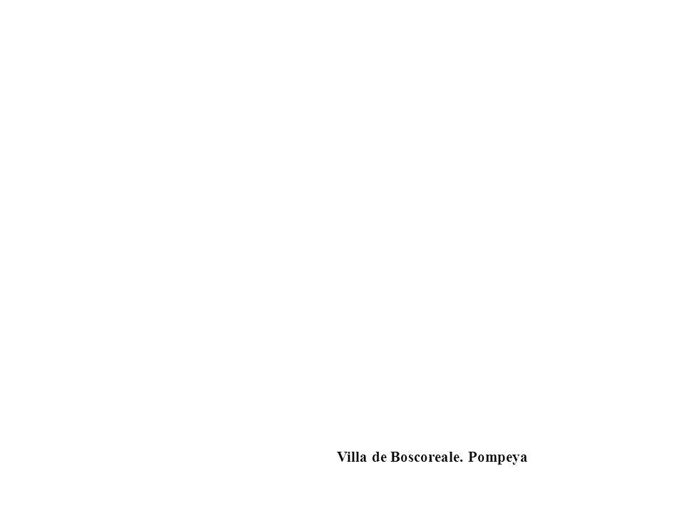 Villa de Boscoreale. Pompeya