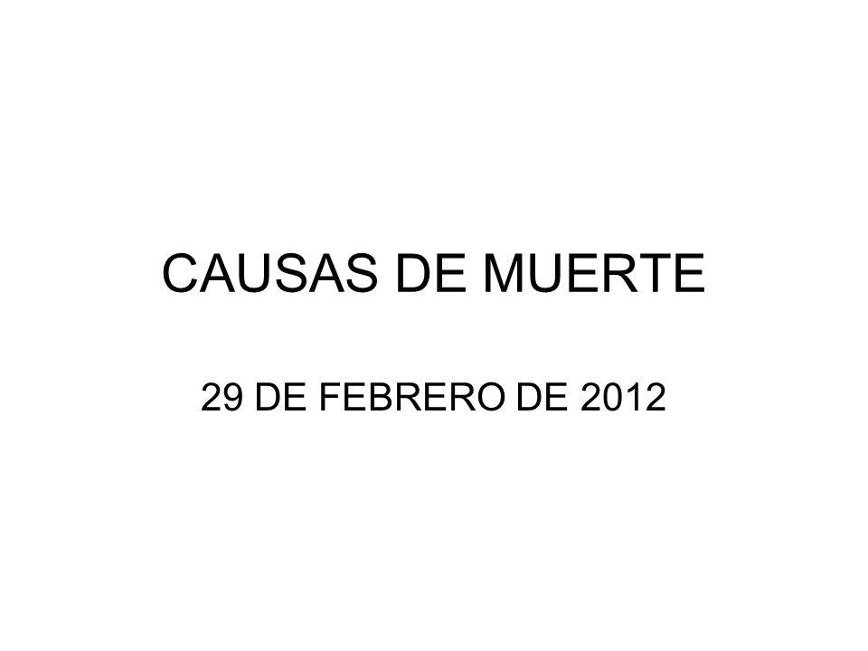CAUSAS DE MUERTE 29 DE FEBRERO DE 2012