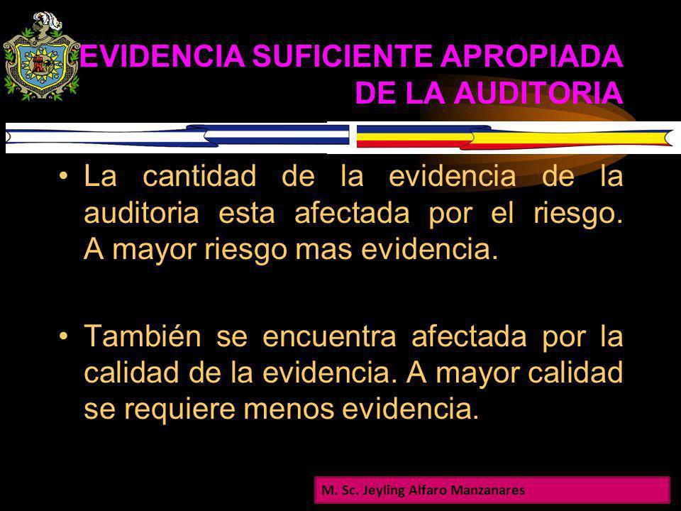 EVIDENCIA SUFICIENTE APROPIADA DE LA AUDITORIA Para formar la opinión de auditoría, el auditor ordinariamente no examina toda la información disponibl