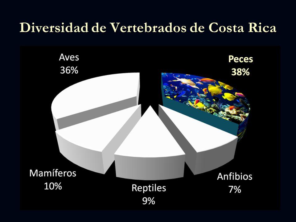 Diversidad de Vertebrados de Costa Rica