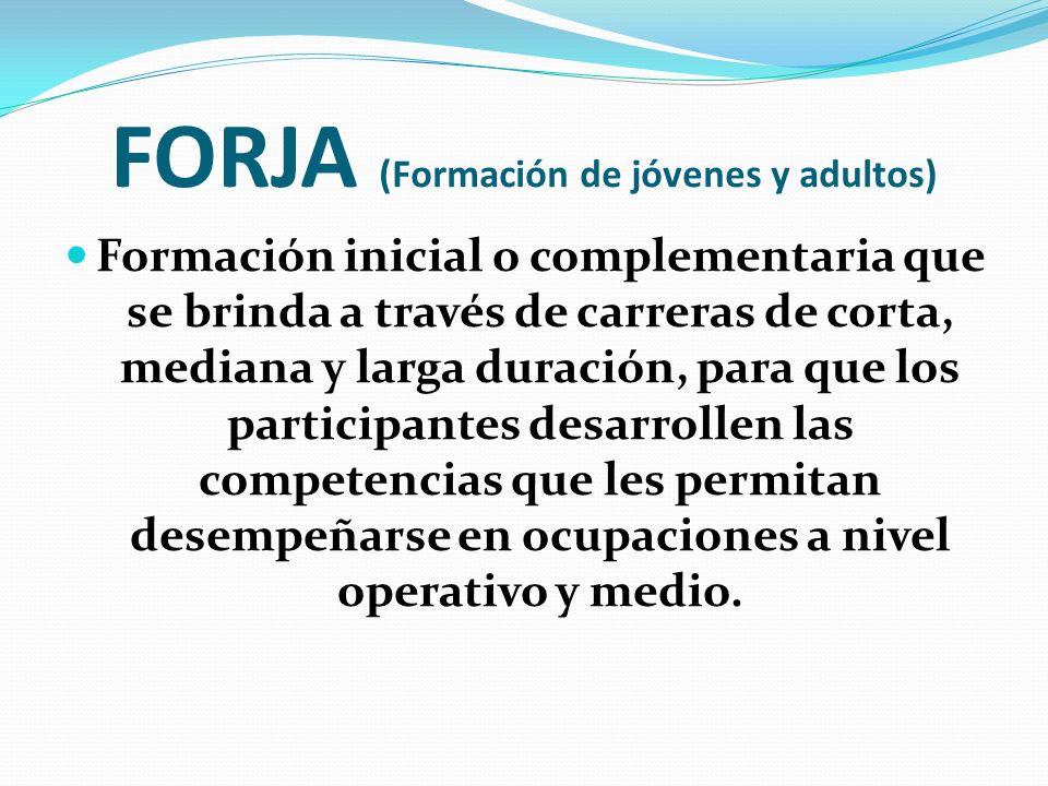 FORJA (Formación de jóvenes y adultos) Formación inicial o complementaria que se brinda a través de carreras de corta, mediana y larga duración, para