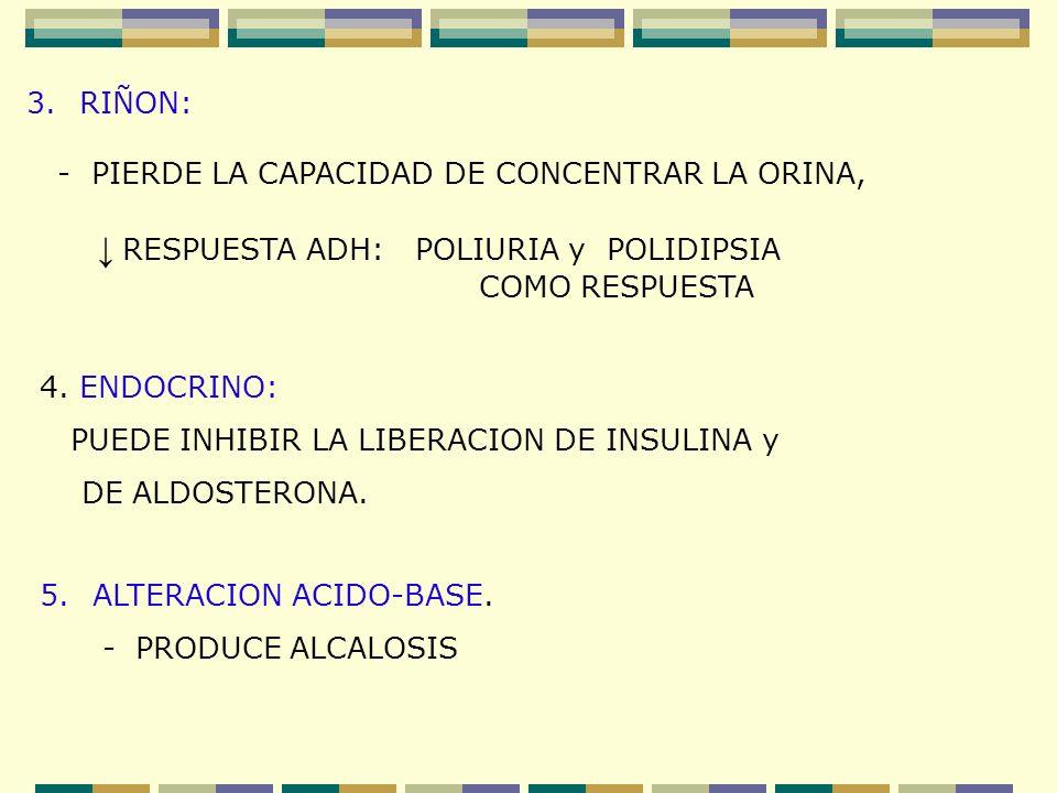3.RIÑON: - PIERDE LA CAPACIDAD DE CONCENTRAR LA ORINA, RESPUESTA ADH: POLIURIA y POLIDIPSIA COMO RESPUESTA 4. ENDOCRINO: PUEDE INHIBIR LA LIBERACION D