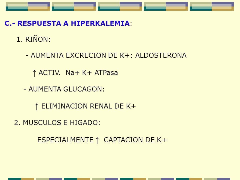 C.- RESPUESTA A HIPERKALEMIA: 1. RIÑON: - AUMENTA EXCRECION DE K+: ALDOSTERONA ACTIV. Na+ K+ ATPasa - AUMENTA GLUCAGON: ELIMINACION RENAL DE K+ 2. MUS