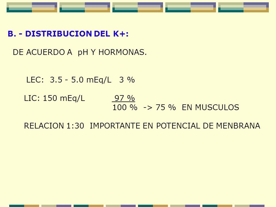B. - DISTRIBUCION DEL K+: DE ACUERDO A pH Y HORMONAS. LEC: 3.5 - 5.0 mEq/L 3 % LIC: 150 mEq/L 97 % 100 % -> 75 % EN MUSCULOS RELACION 1:30 IMPORTANTE