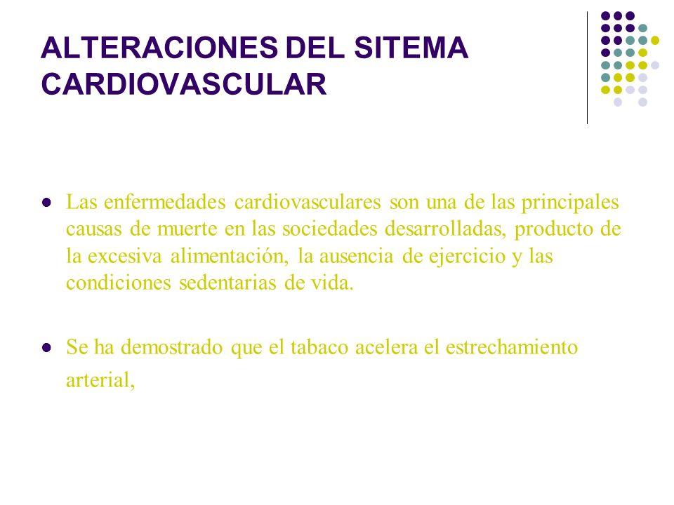 ALTERACIONES DEL SITEMA CARDIOVASCULAR Las enfermedades cardiovasculares son una de las principales causas de muerte en las sociedades desarrolladas,