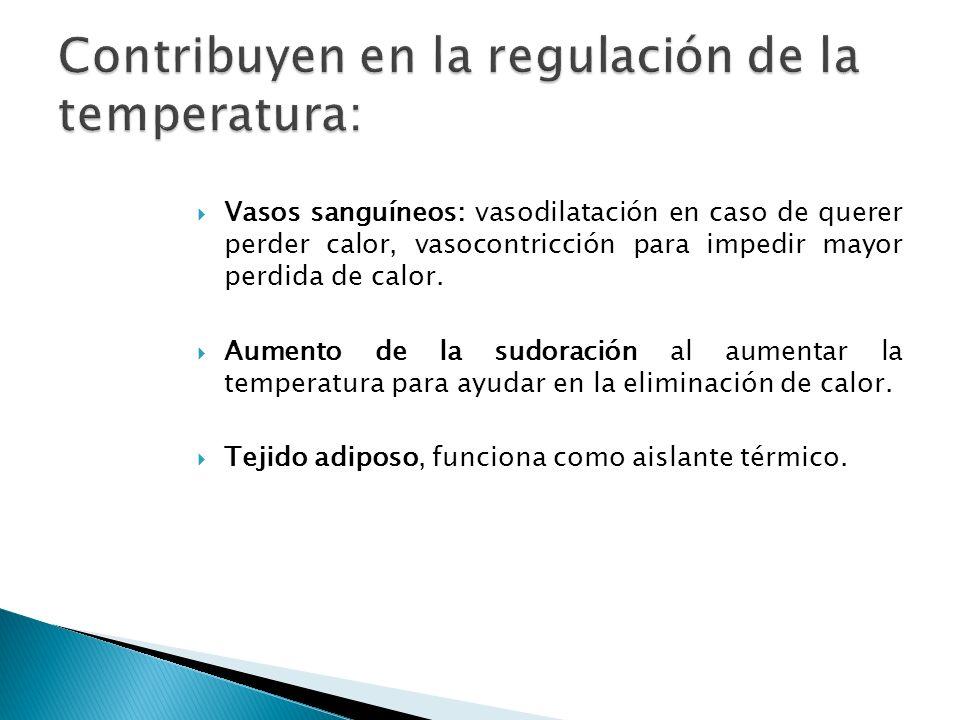 Por radiación: Con luz infrarroja, para tratamientos locales, lámpara a 40 cms.