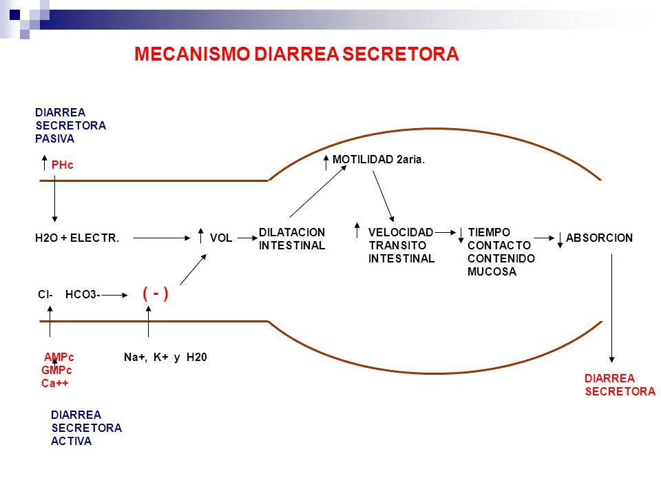 H2O + ELECTR. Cl- HCO3- ( - ) Na+, K+ y H20 VOL DILATACION INTESTINAL MOTILIDAD 2aria. VELOCIDAD TRANSITO INTESTINAL TIEMPO CONTACTO CONTENIDO MUCOSA
