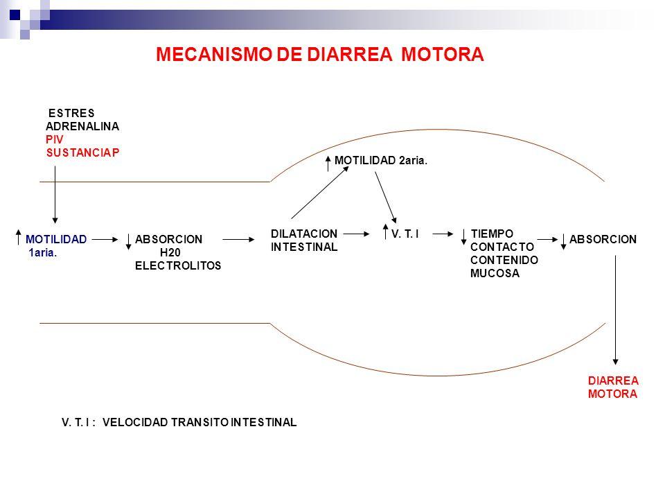 DILATACION INTESTINAL MOTILIDAD 2aria. TIEMPO CONTACTO CONTENIDO MUCOSA ABSORCION DIARREA MOTORA ESTRES ADRENALINA PIV SUSTANCIA P MOTILIDAD 1aria. V.