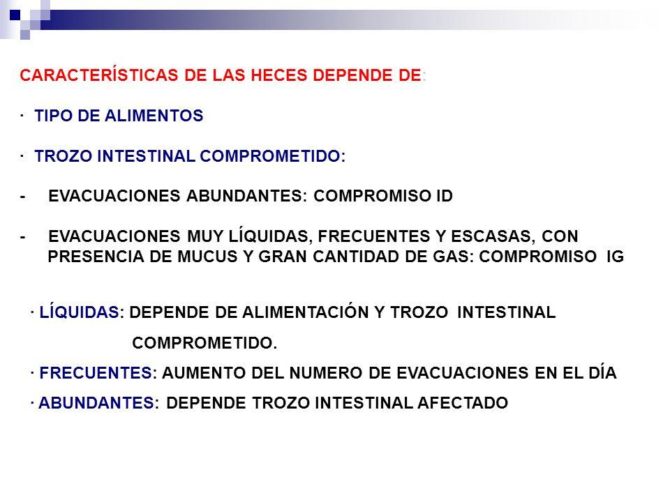 CARACTERÍSTICAS DE LAS HECES DEPENDE DE: · TIPO DE ALIMENTOS · TROZO INTESTINAL COMPROMETIDO: - EVACUACIONES ABUNDANTES: COMPROMISO ID - EVACUACIONES